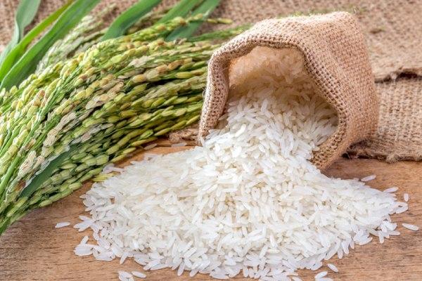 Rice Parcel Service
