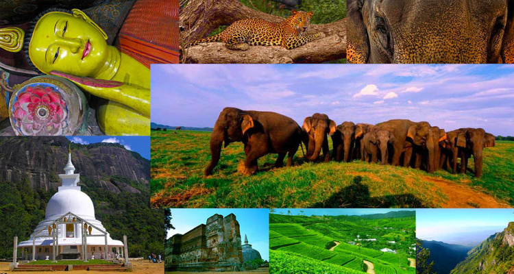 Teeparam Sri Lanka Tour Packages